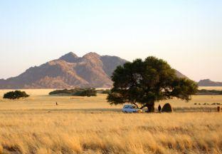 Safari Windhuk Flughafen